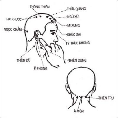 Vị trí và công dụng của các huyệt trên đầu khi massage bấm huyệt