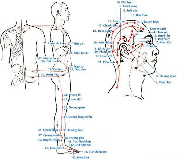 Huyệt nằm ngoài đường kinh (huyệt ngoài kinh - ngoại kỳ huyệt)