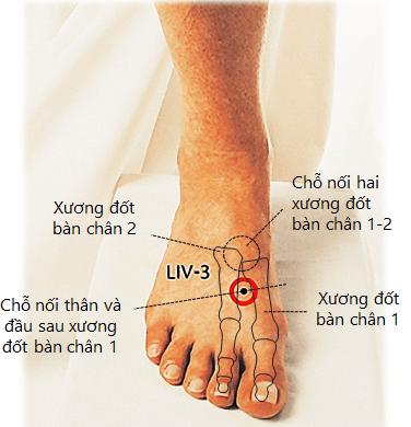 Cách bấm huyệt Nội đình